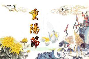 重阳节的活动策划|用企业定制酒和赏菊彰显公司文化内涵