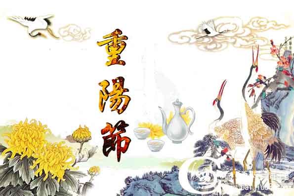 重阳节的活动策划