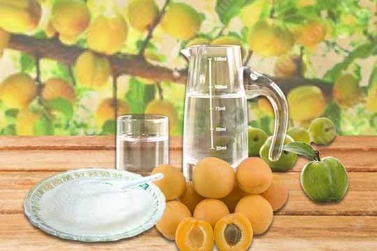 杏子酒的制作方法