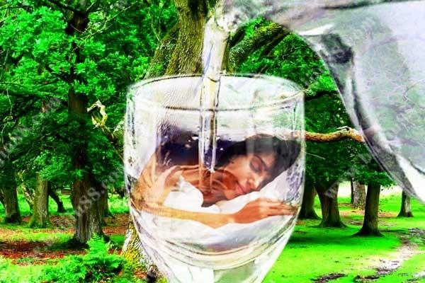 世界睡眠日-睡前饮用白酒是否真的有益睡眠质量?