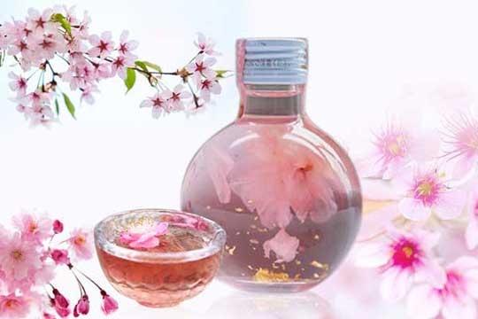 樱花酒是怎么制作的