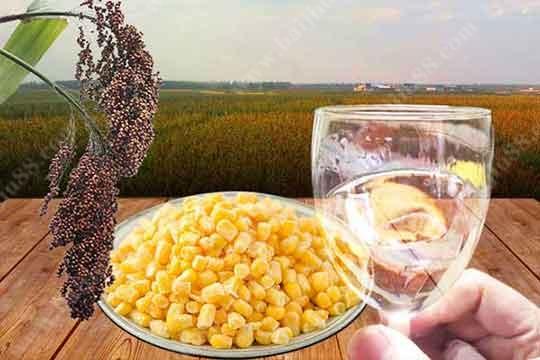 高粱酒和玉米酒的区别