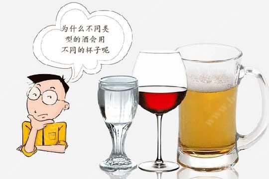 饮用不同类型的酒为什么会选用不同的杯子