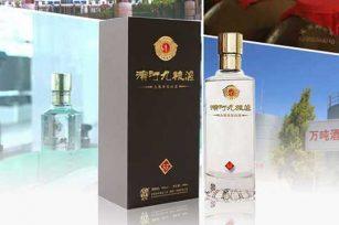 甘肃的滨河九粮液酒的价格是多少?