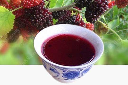 哪些是营养又有保健功效的果酒