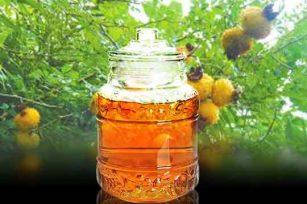 带您了解一下刺梨子泡酒的功效