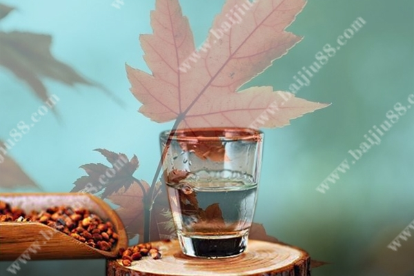 秋天适合喝什么酒