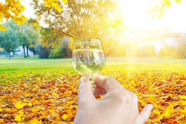 秋季喝酒时的注意事项