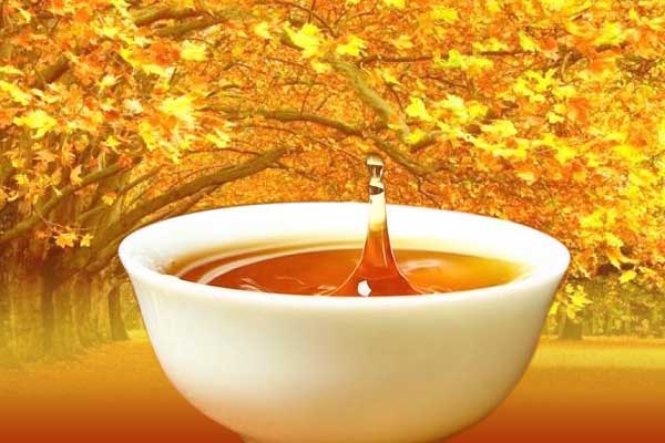 秋季的日子喝什么酒对身体好