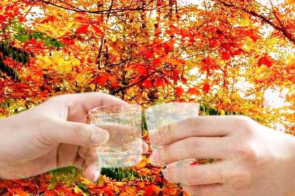 秋季喝酒的四大好处