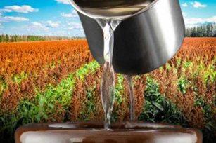 给大家分享下,保存高粱酒时要注意哪些条件