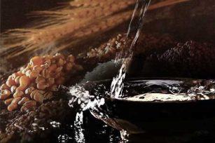 白酒知识-酿造白酒中采用的单粮和多粮有什么区别