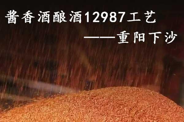 酱香酒酿酒12987工艺