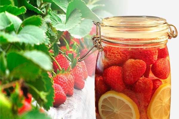 草莓酒的功效