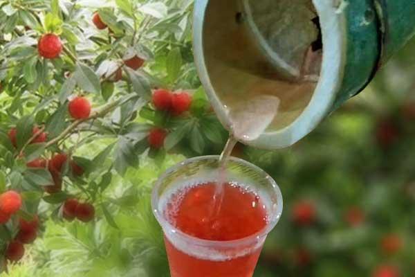 竹酒为什么是红色的-竹子里红色的酒是怎么回事
