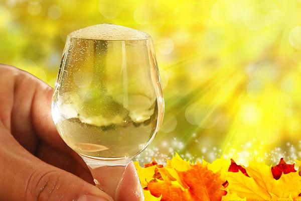 秋天喝奶茶,不如喝一杯酱香白酒来得好
